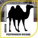 Przeprowadzki WIELBŁĄD - Przeprowadzki WIELBŁĄD Łódź i okolice