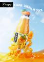 Projekt reklamy soku Cappy