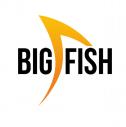Big Fish - Animacja i Grafika Wroclaw i okolice