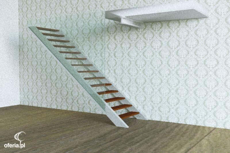 Inne rodzaje Zlecę wykonanie konstrukcji metalowej dla schodów samonośnych ZS24