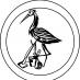 czapla - firma sprzatąjąca