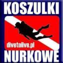 DiveToLive Divetolive-pl Grzybowa Góra i okolice