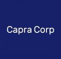 Funkcjonalne strony WWW - Capra Corp Liszki i okolice